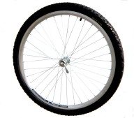 extrawheel_wheel_big