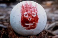 Wilson Volleyball